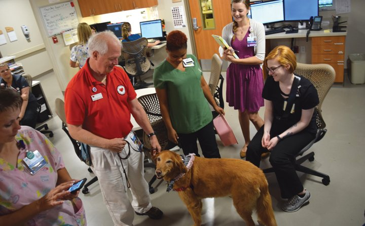 Dr. Norm Knowlton visits staff with his pet therapy dog, Lucy.